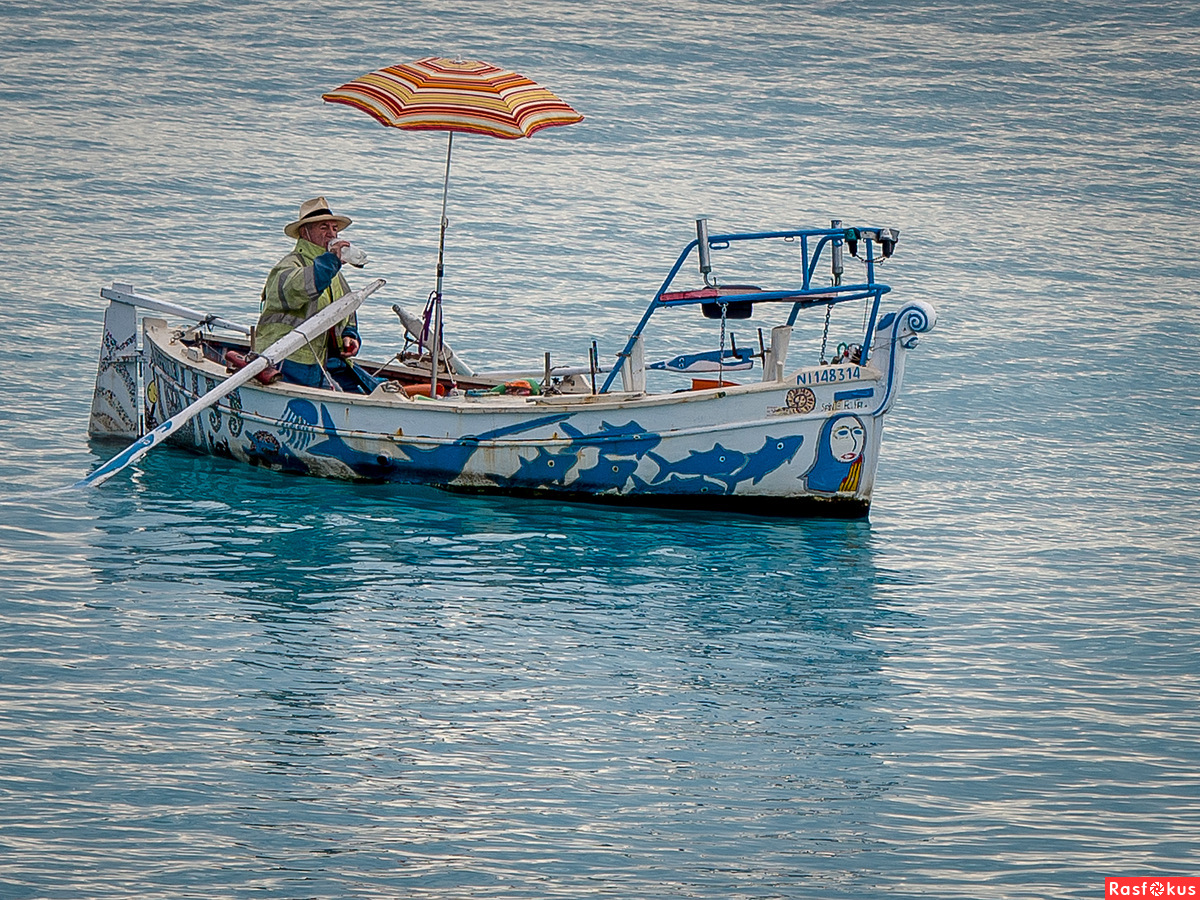Суши весла таганрог 18 фотография