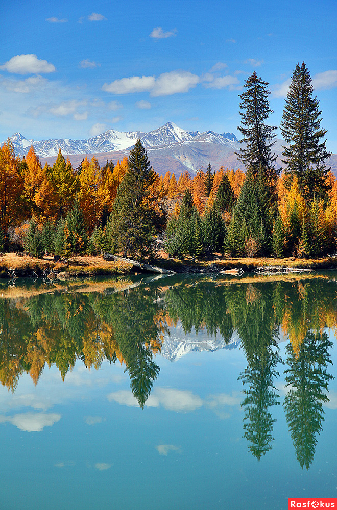 фото пейзажей алтая