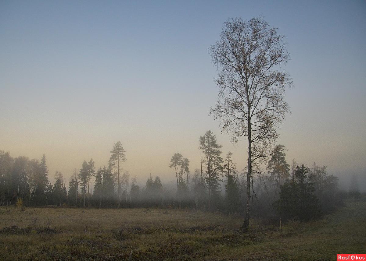 Раннее октябрьское утро