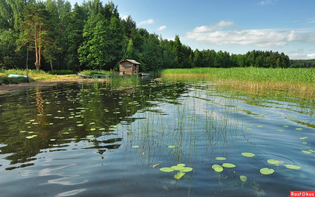 рыбалка на озерах борисовского района