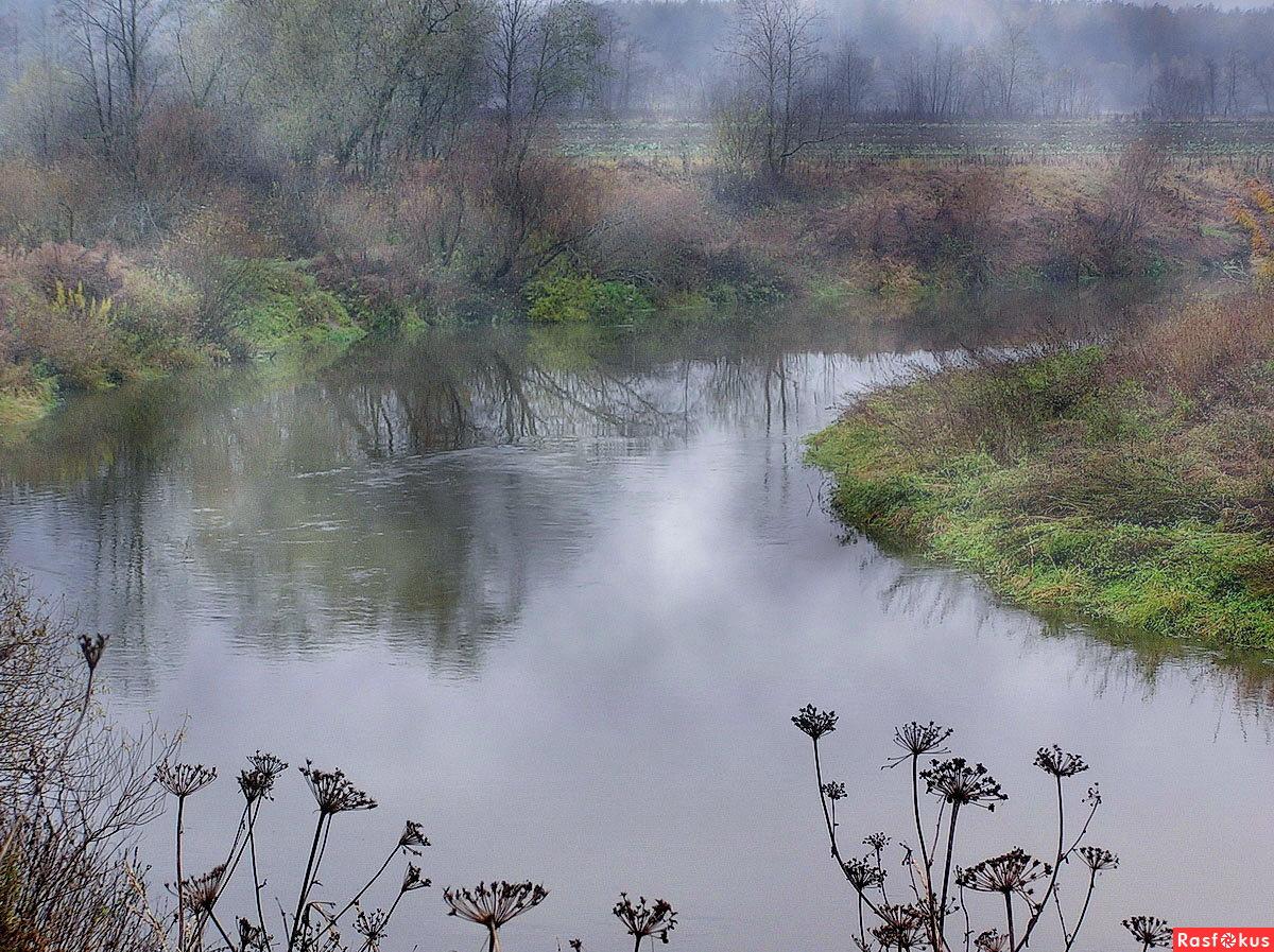 река сестра солнечногорск рыбалка