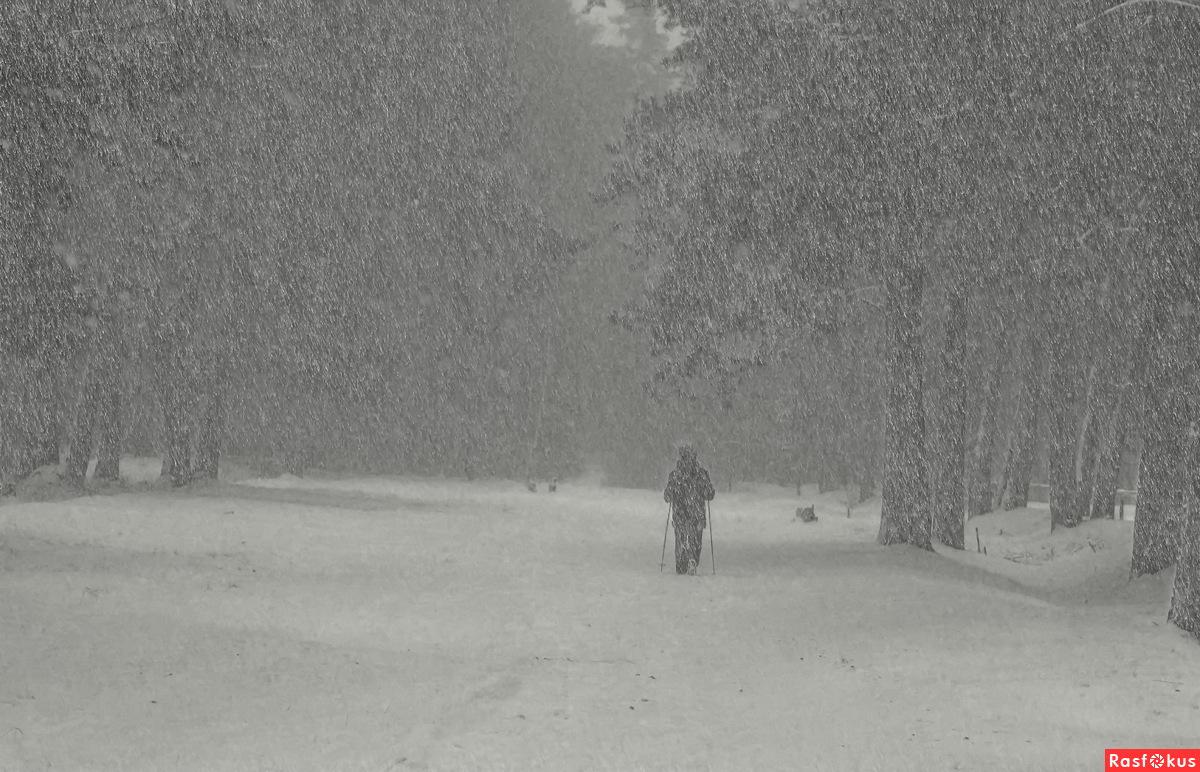 Зимние прогулки..