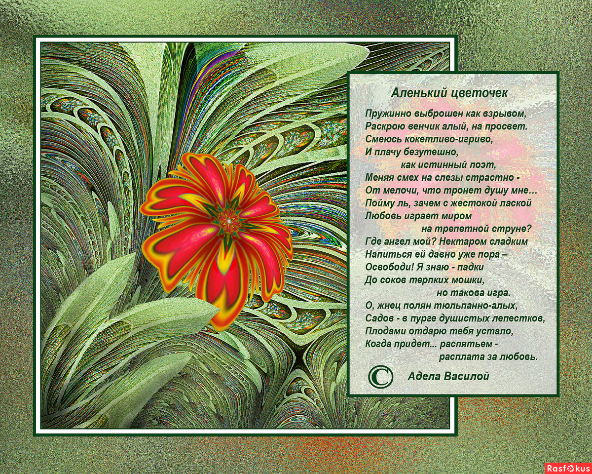Стих о цветочке аленьком цветочке