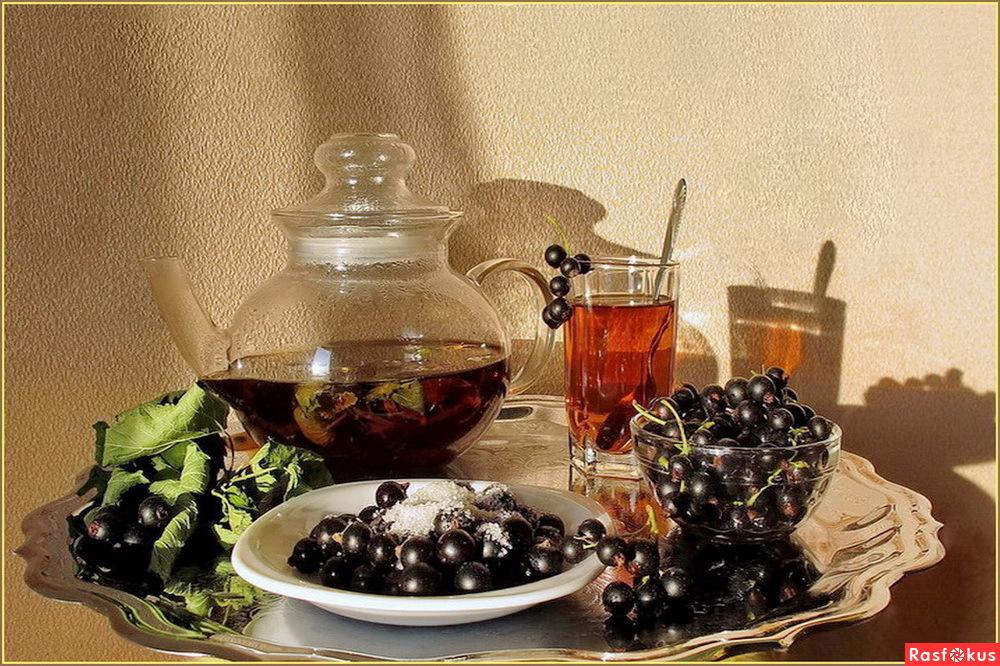 Чай из смородины в домашних условиях 902