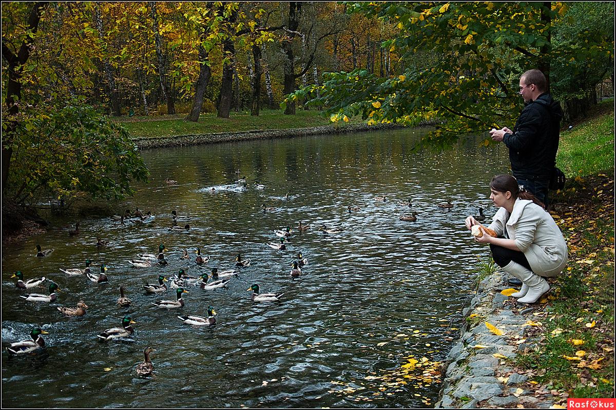рыбалка в парке победы спб