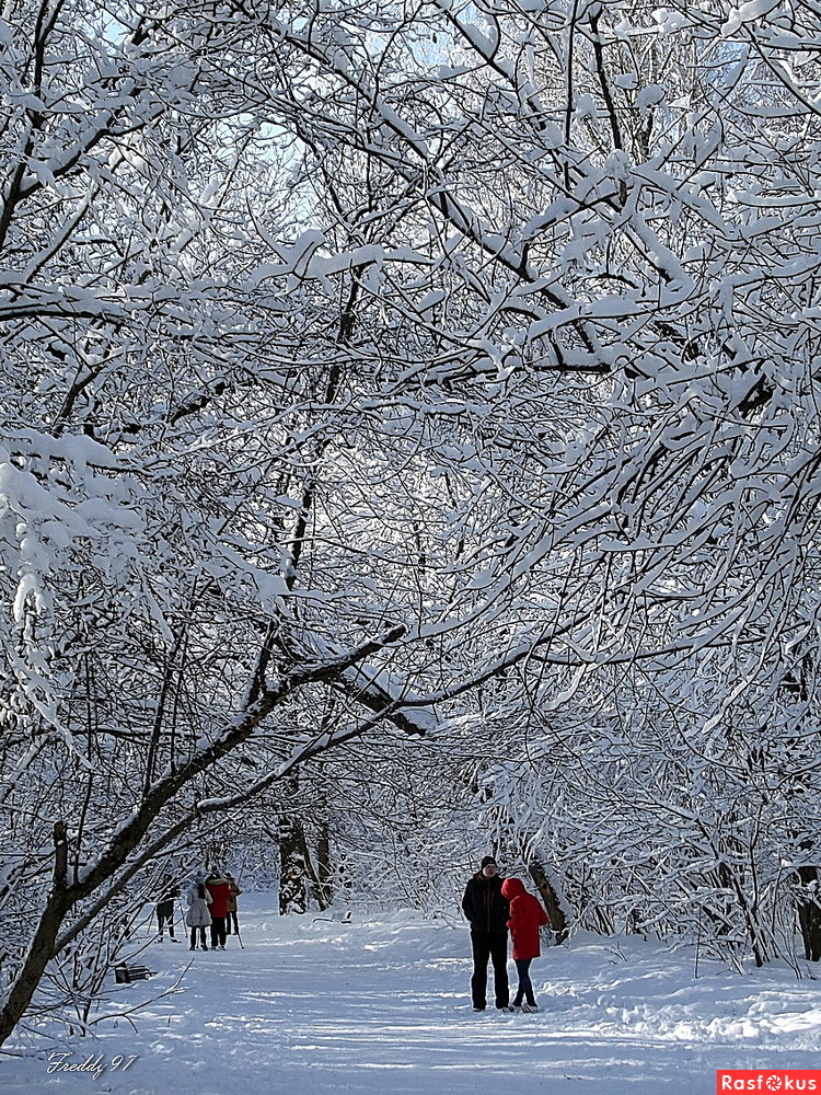 Зимнее настроение...