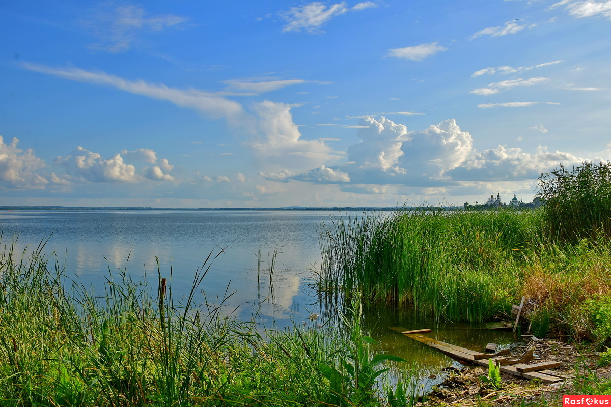 Летний день на берегу озера