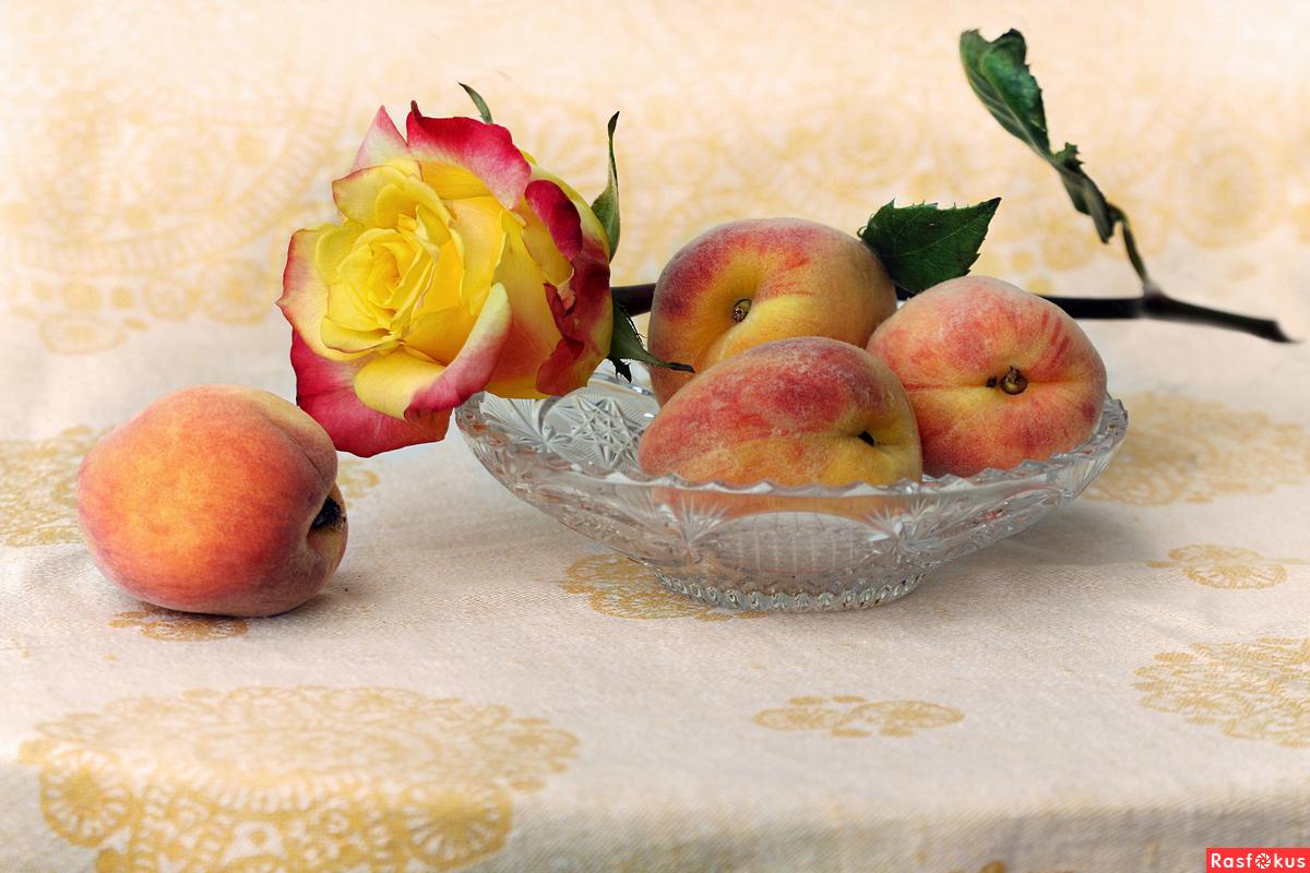 Персики и роза