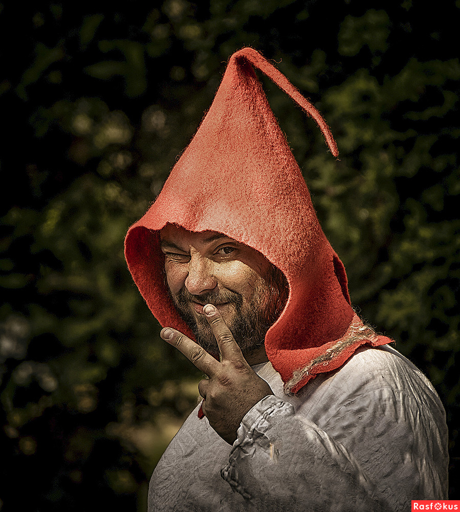 Дело в шляпе...или загадочный намек ...