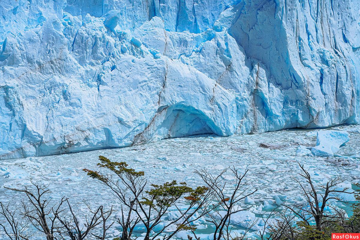 Лес и лёд...