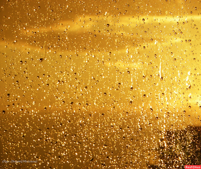 Че такой золотой дождь 20 фотография