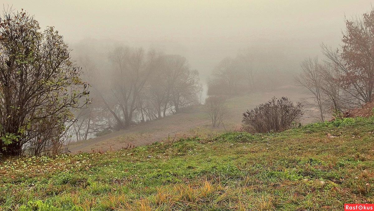 Туман на берегу реки
