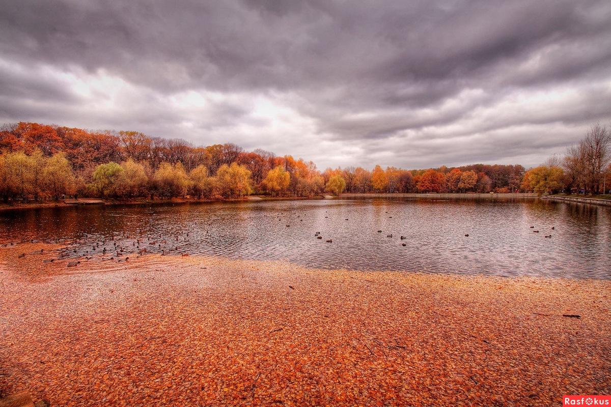 На Терлецких прудах осень