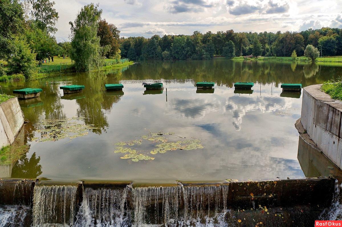 кузьминский мост рыбалка