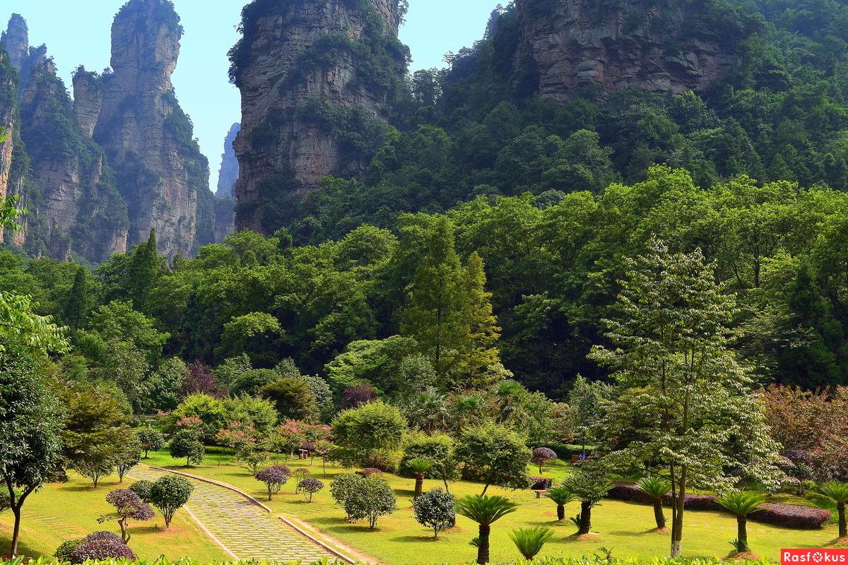 Парк в горах Чжанцзяцзе