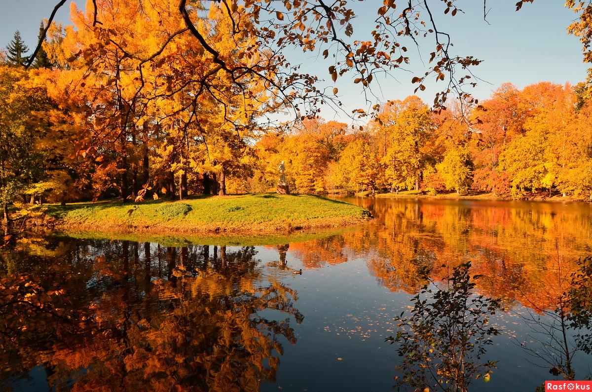Осень. Чудные мгновения.