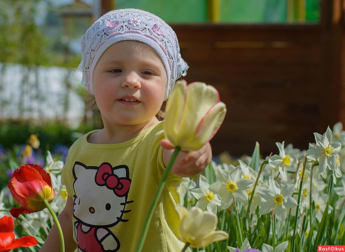 Фото для детей цветы