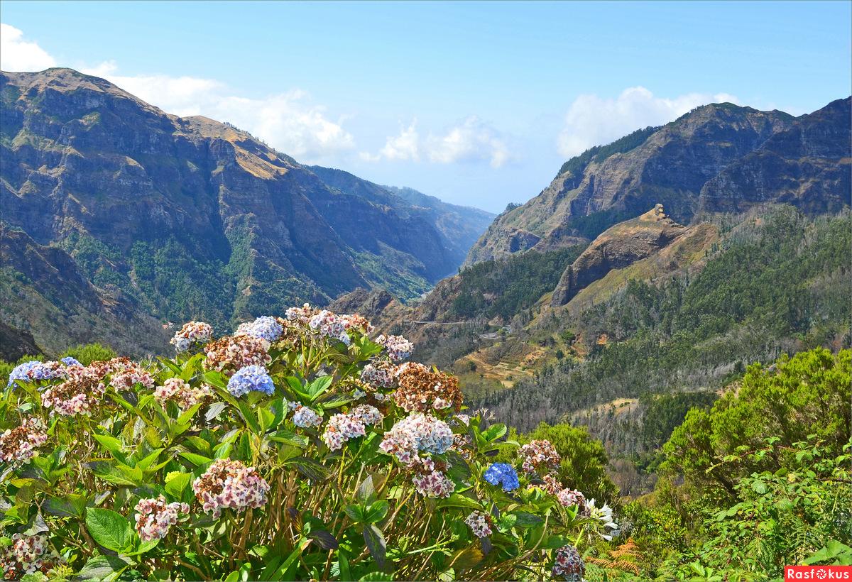 Картинки по запросу перевал Энкумеада