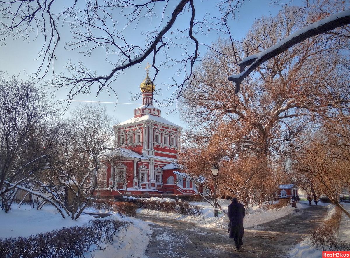 В Новодевичьем