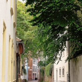 "in the alleys of ""Old Heidelberg"""