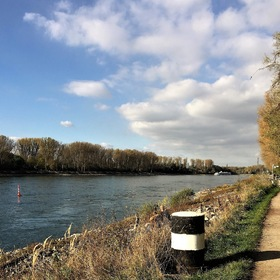 Autumn walk along the Rhine River...